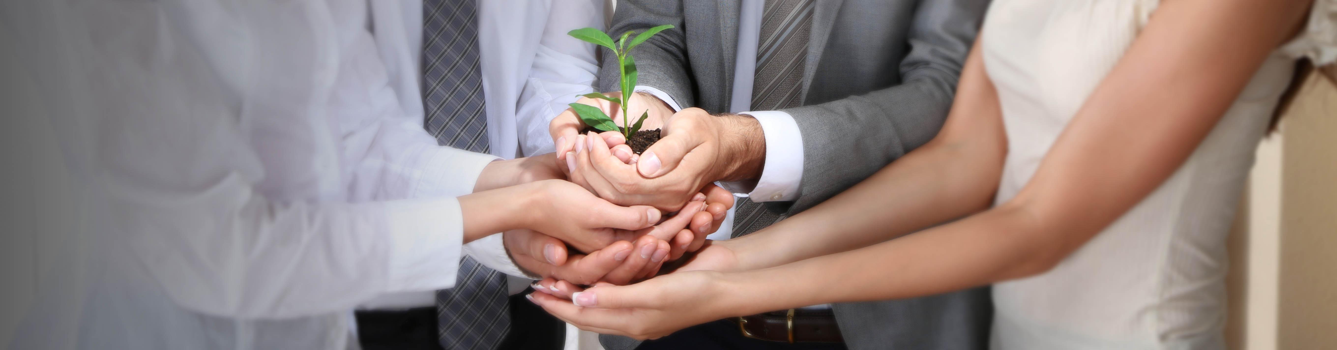 Los valores son clave para el éxito de un negocio