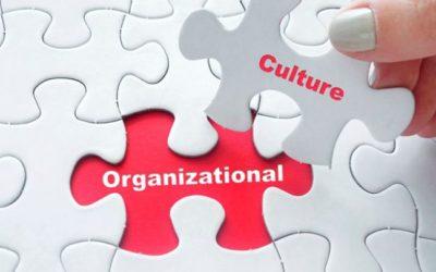 Libros de Cultura Organizacional